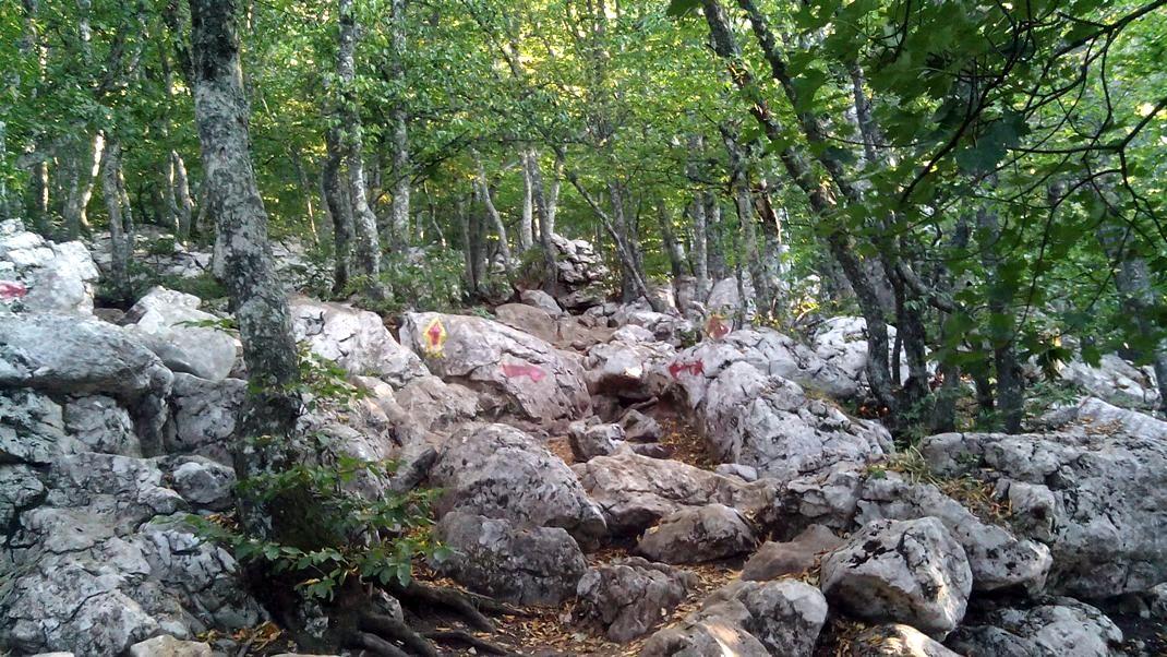 Путь на вершину Ай-Петри