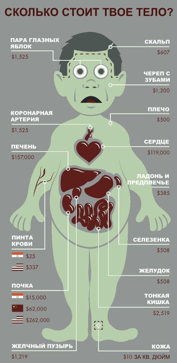 Сколько стоит твое тело