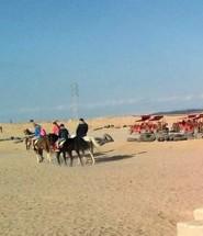 Супер сафари Хургада Египет
