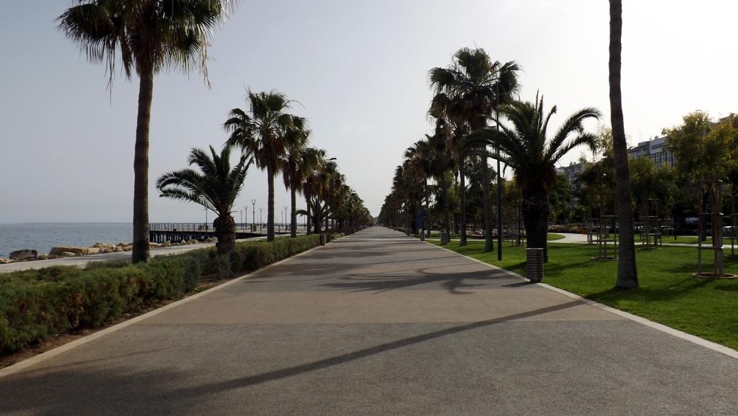 park-v-limassole