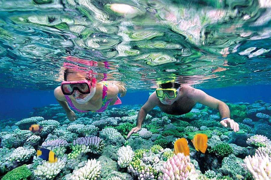 Домашний риф Фихалхохи