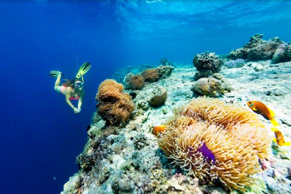 Граница рифа Фихалхохи