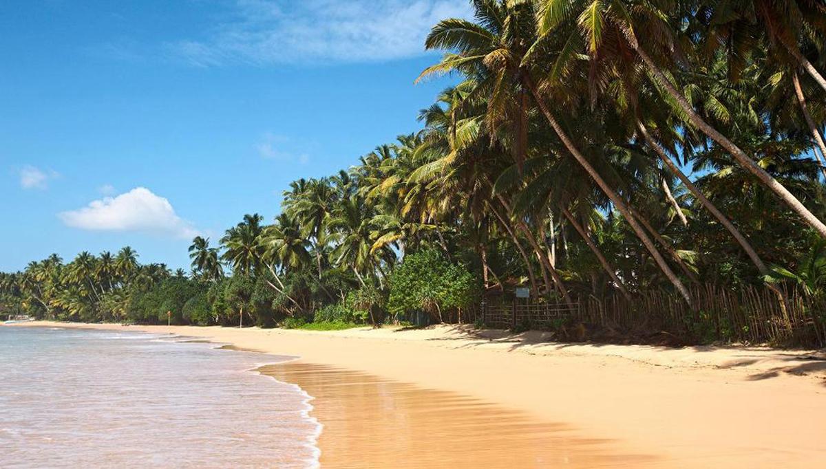 Пейзаж побережья Шри-Ланки