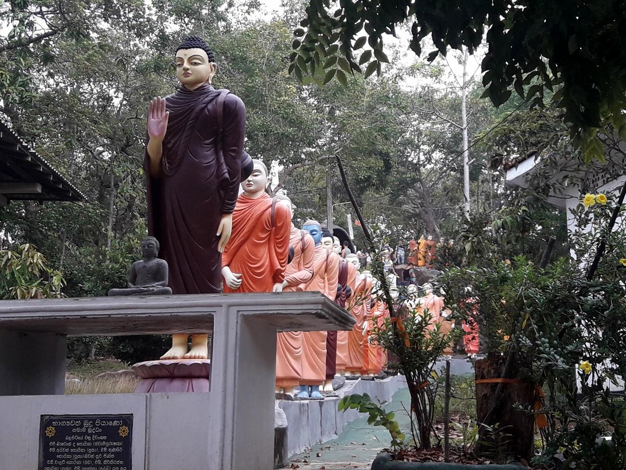 Остров буддийский храм Хиккадува