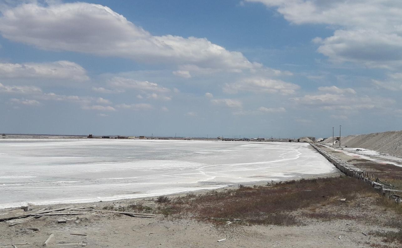 Сасык-сиваш Евпатория розовое озеро